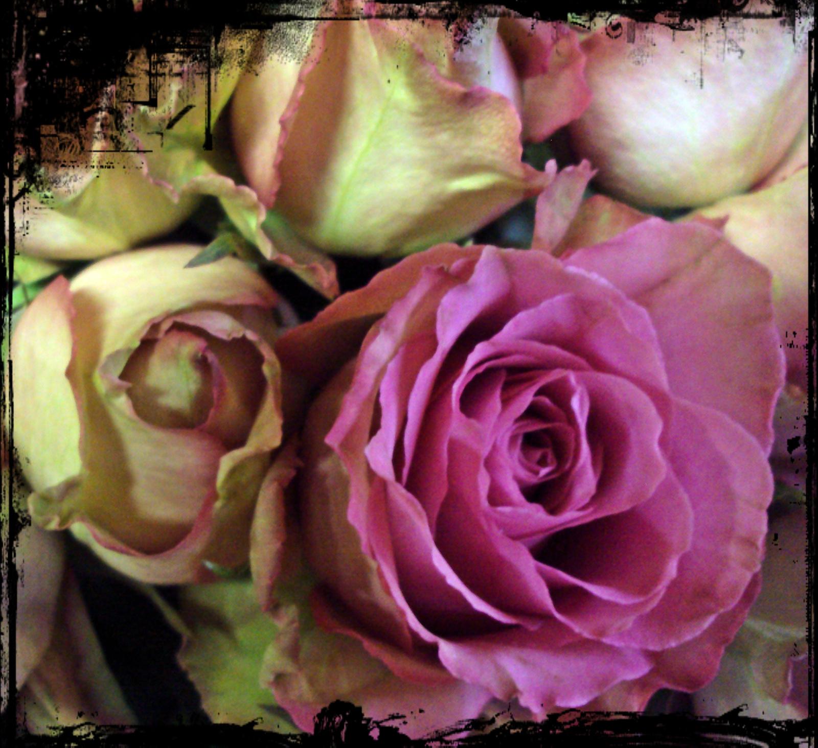 Virágboltban