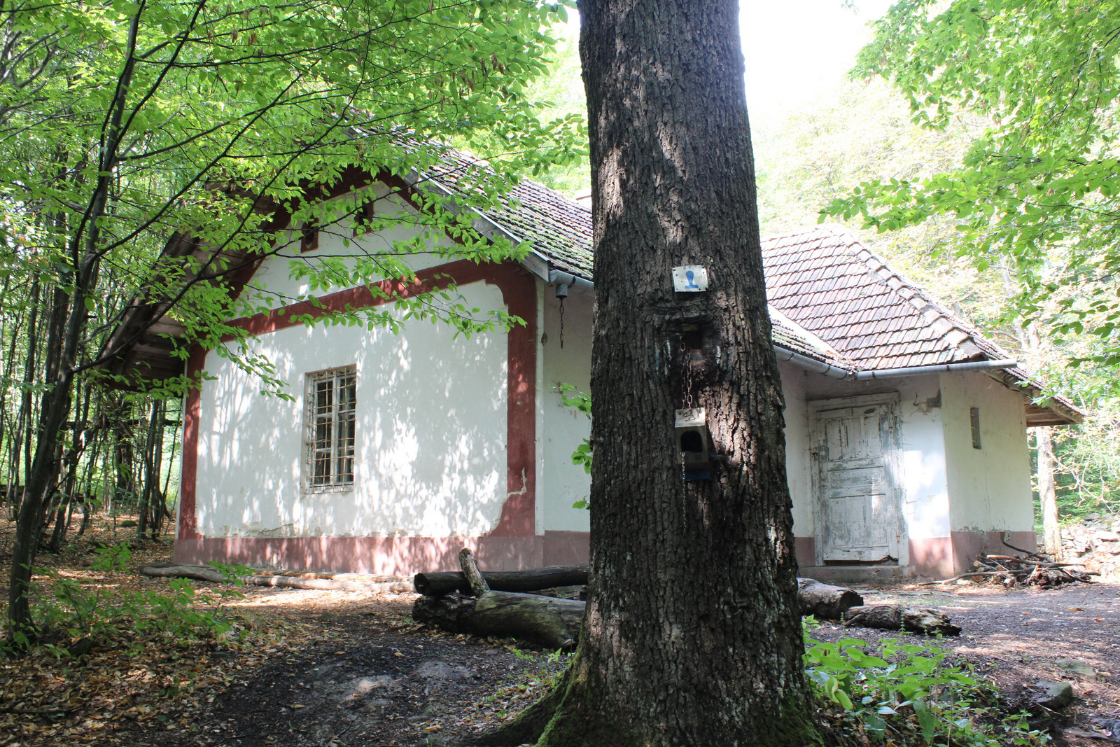 20180825-39-Istvankut-Vadaszhaz