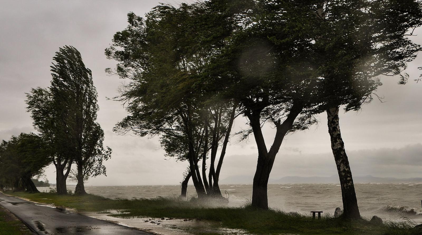 Vihar a tónál