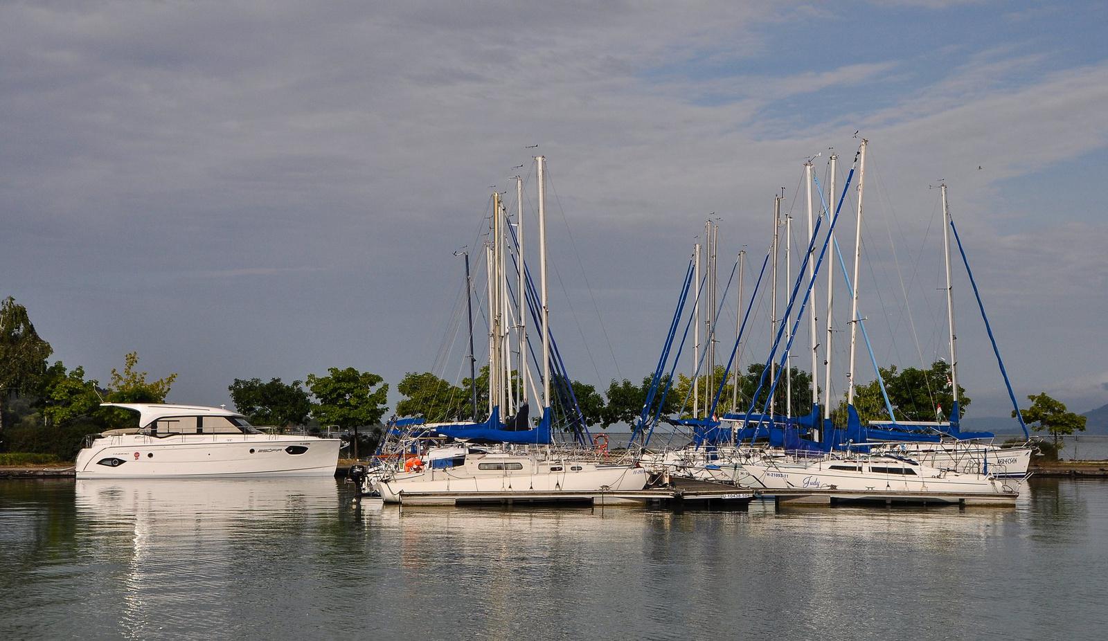 Idegen a kikötőben
