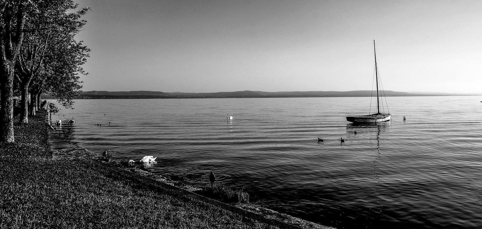 Kora reggel a parton FF