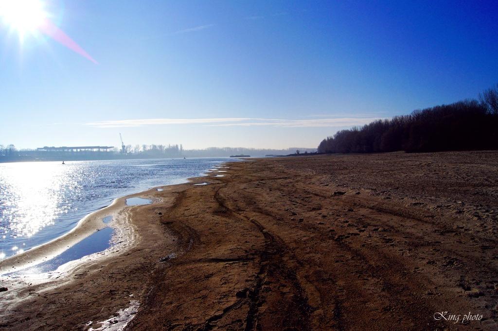 Duna közepén