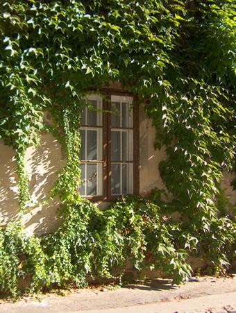 Rejtőzködő ablak