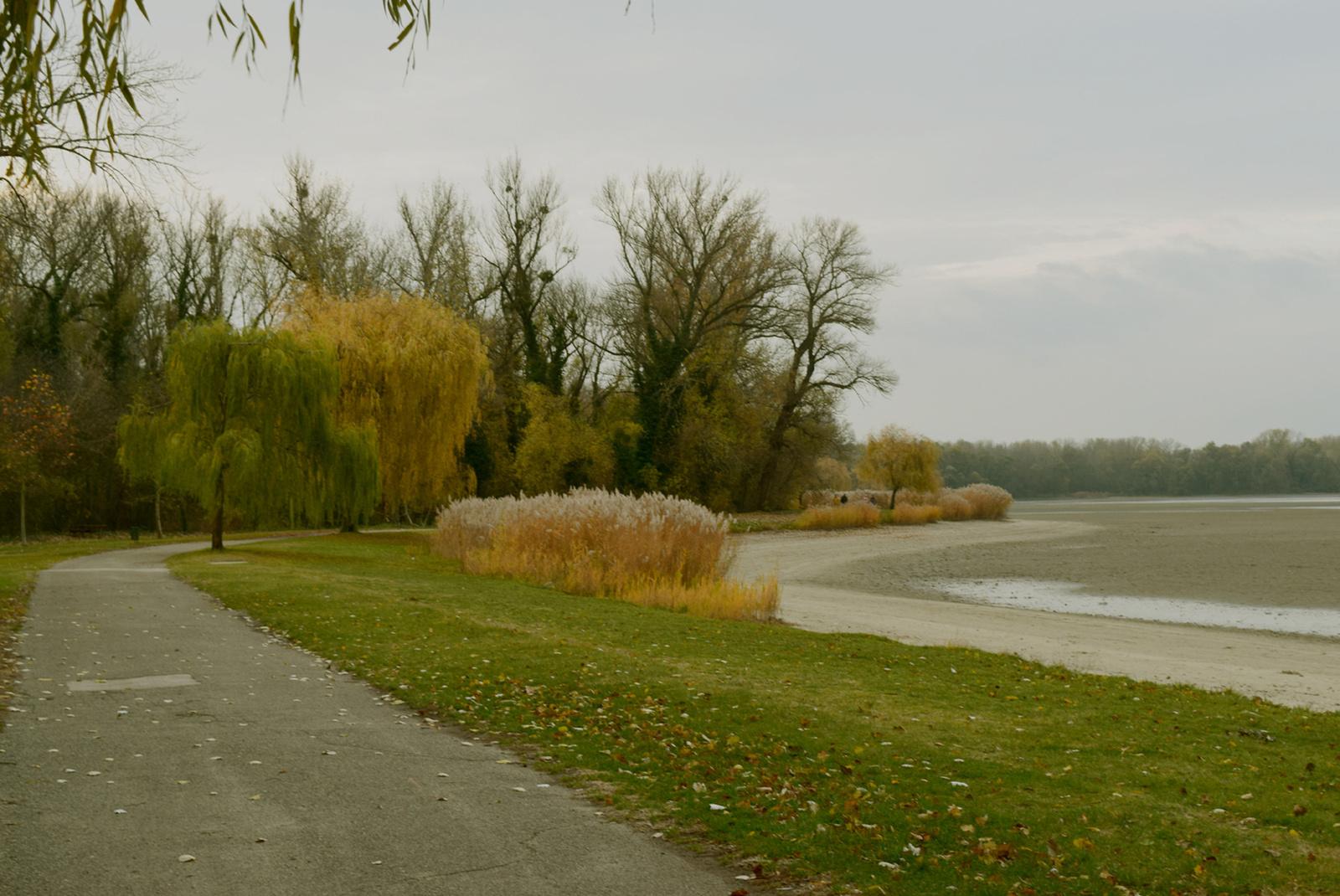 A tómeder mentén