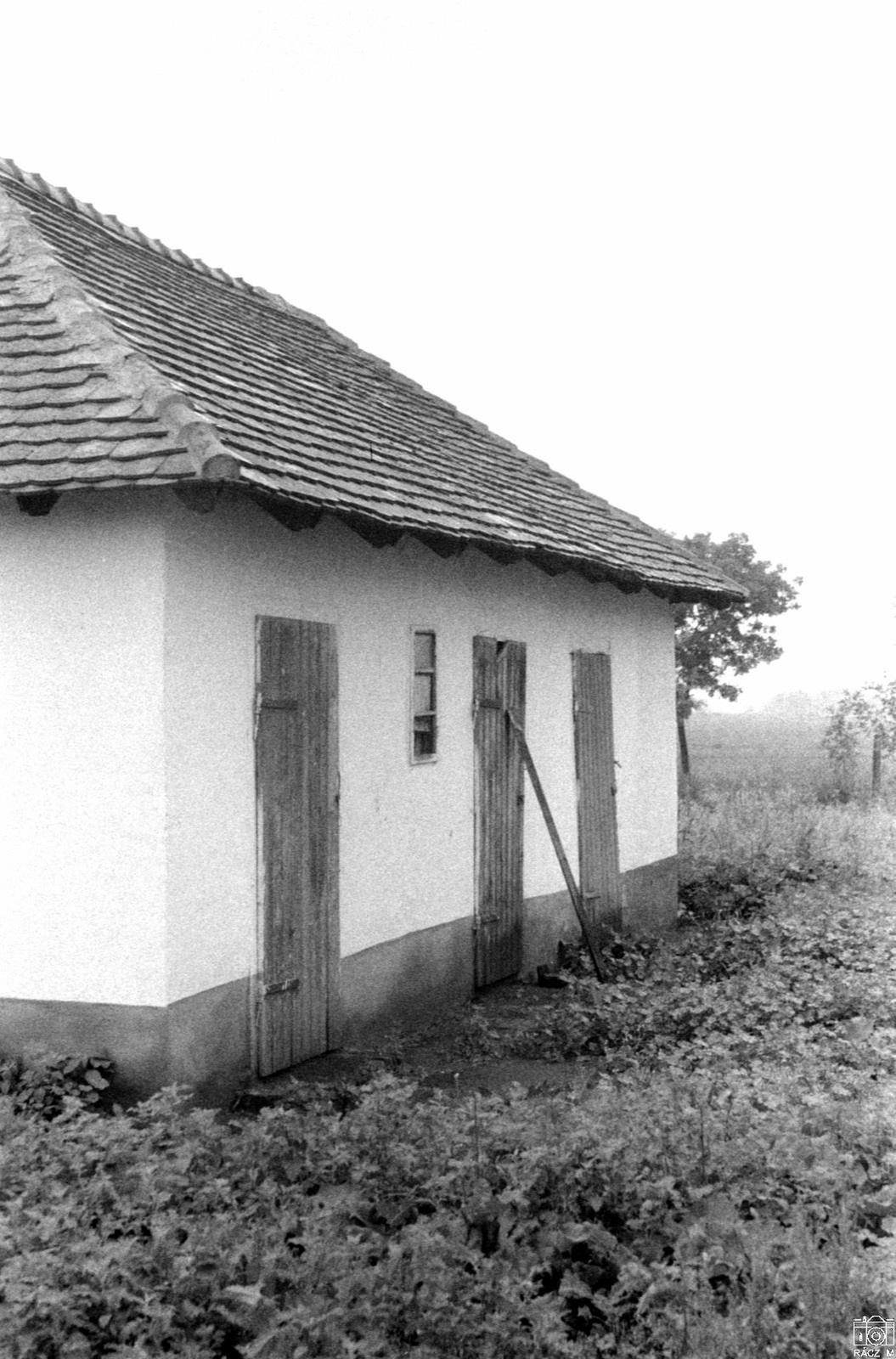 melléképület, 1973