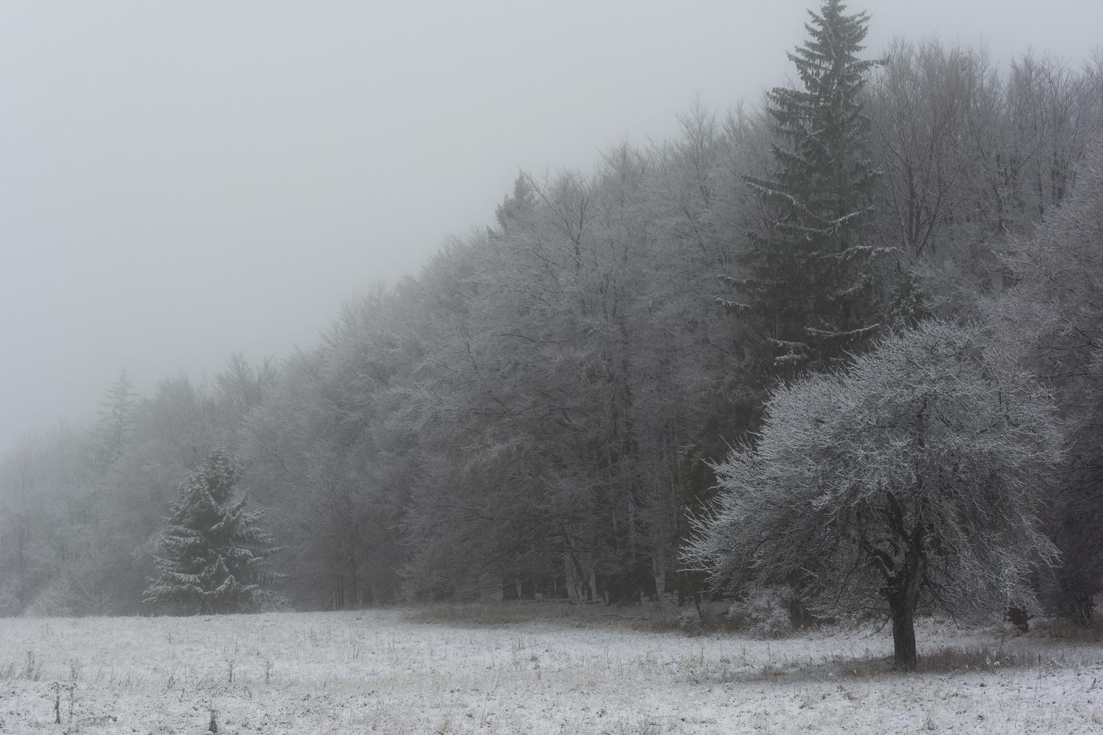 Novemberi tél Bánkúton.