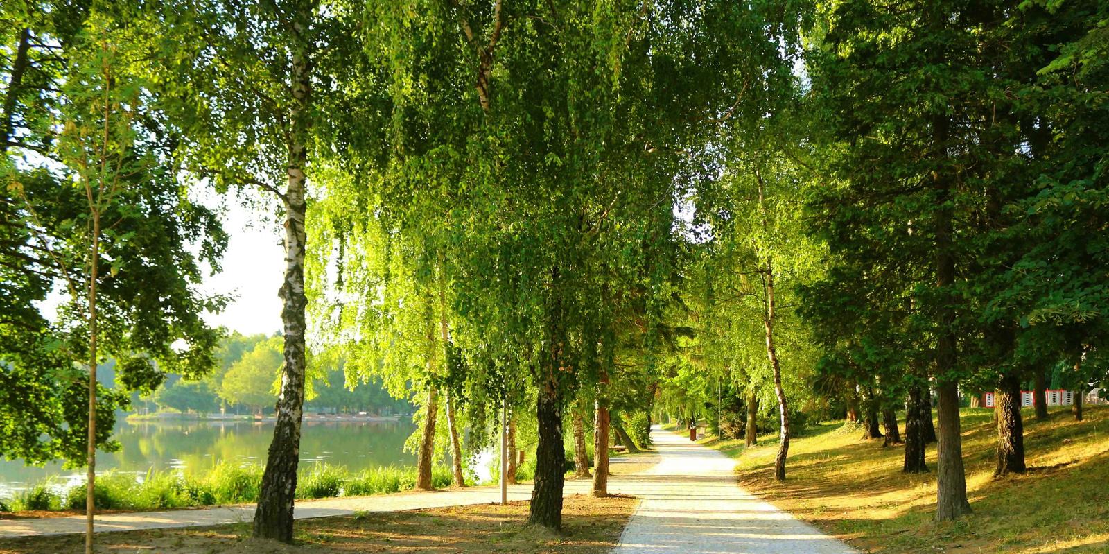 Reggel a tónál 080