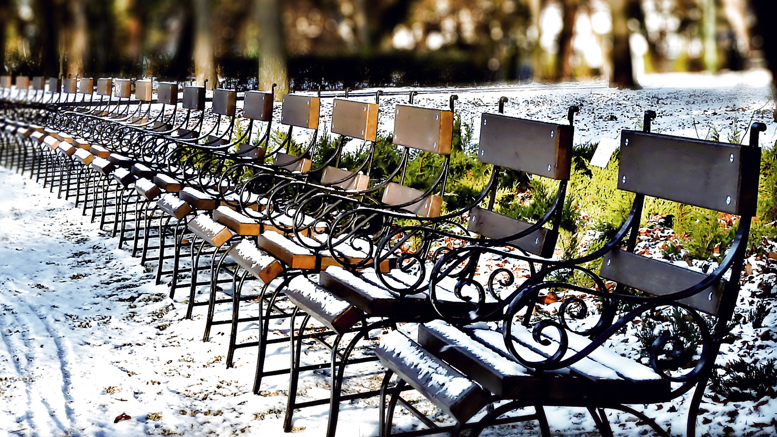 Padok-Erzsébet kert-Sopron-Tél