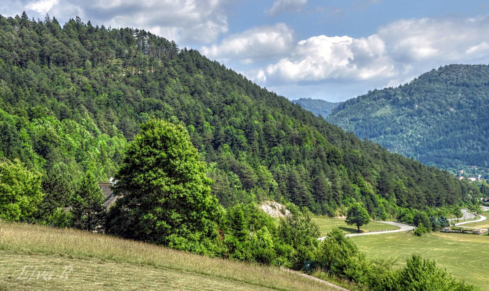 Nyár Alpok Táj