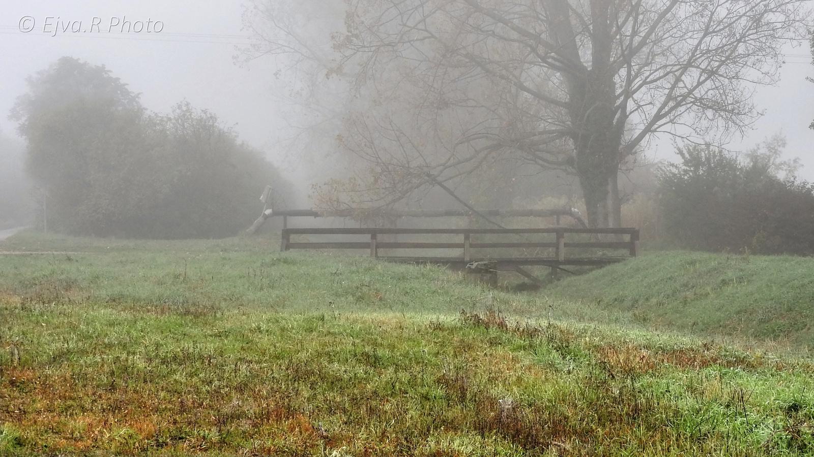 Köd Ősz Híd