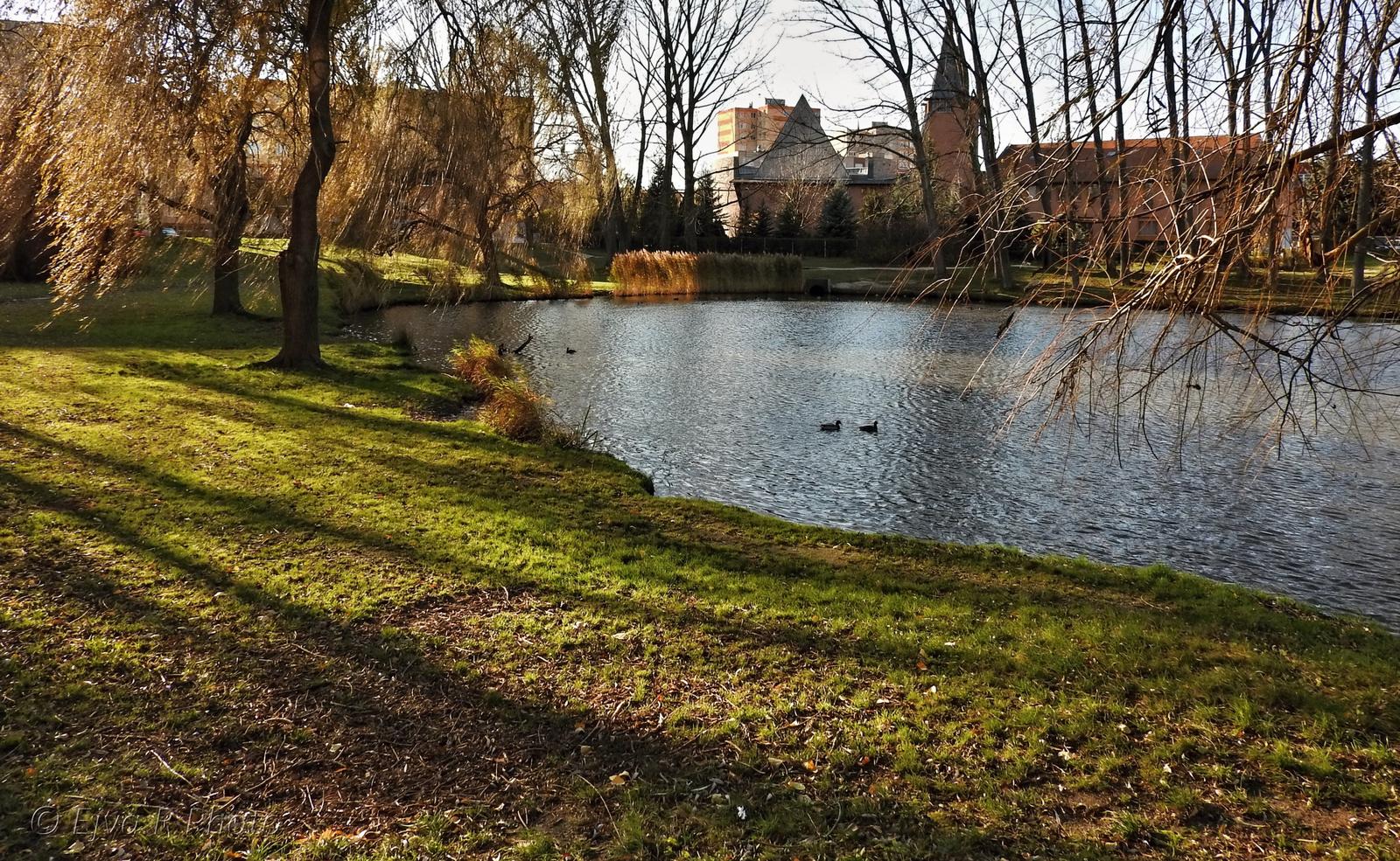 Ibolya tó Sopron ősz