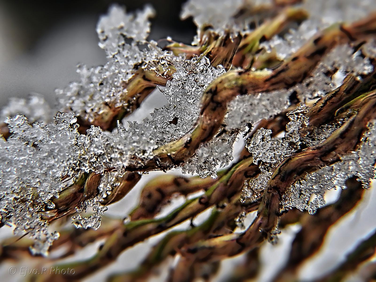 Fagy Jég Tél