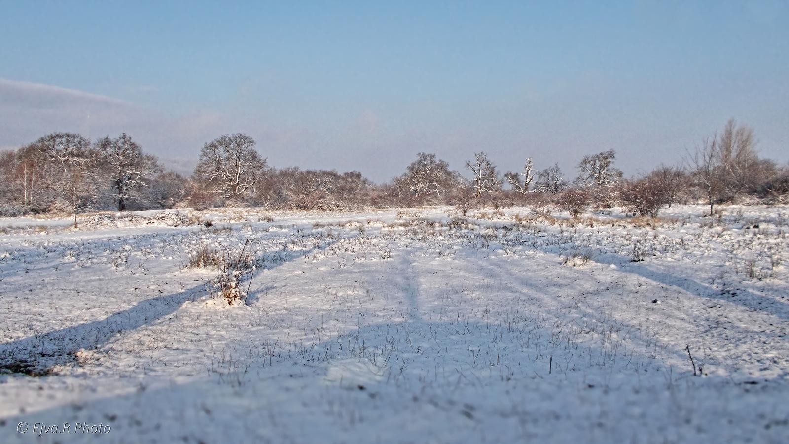 Tél Táj Hó