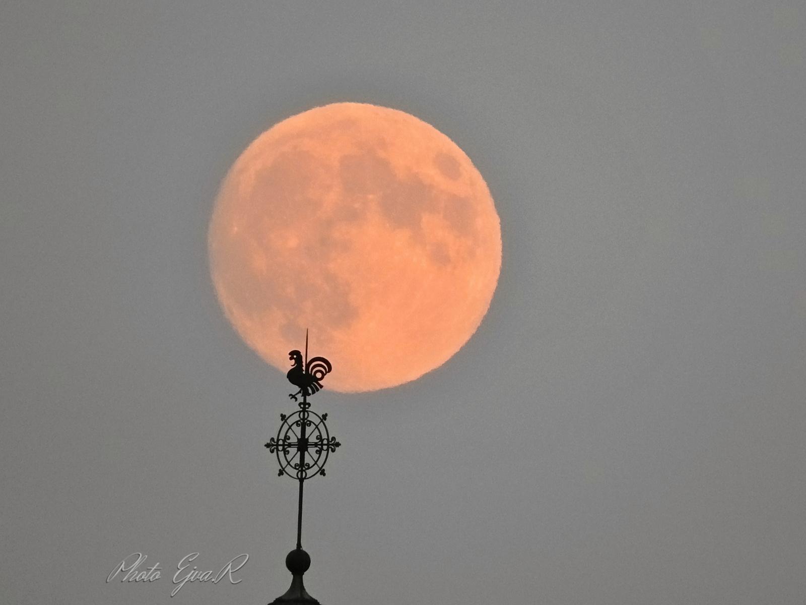 Hold Szélkakas Nyár