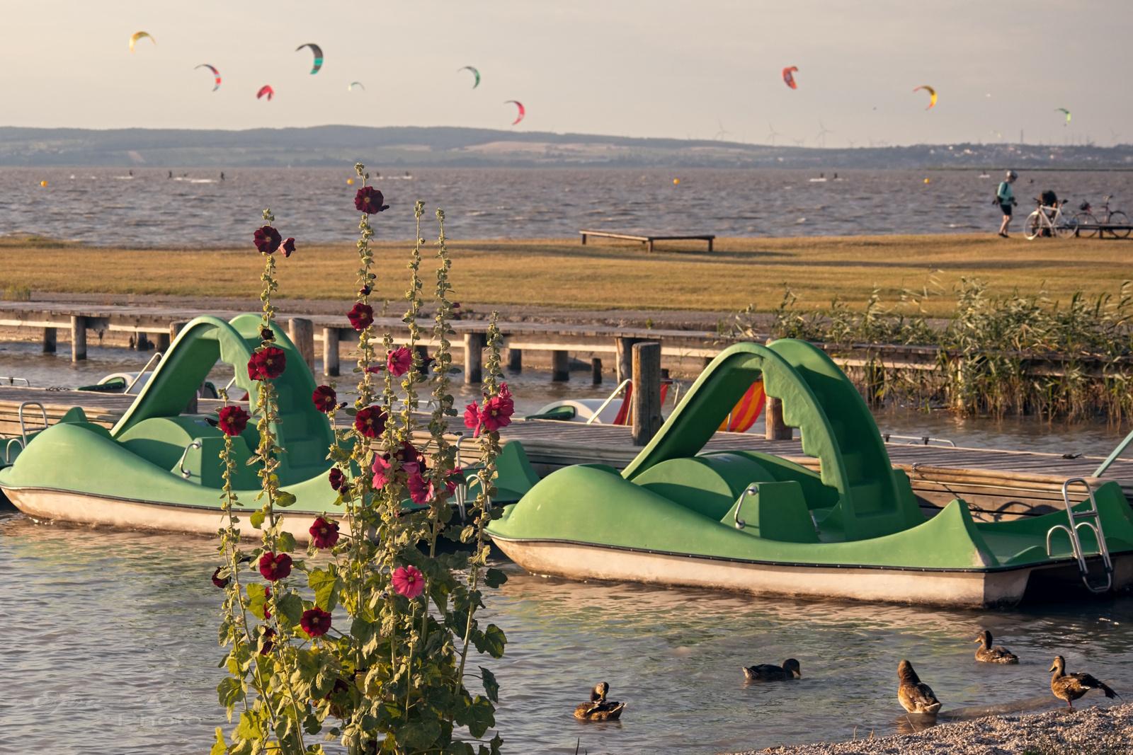 Strand Fertő-tó Vizibicikli