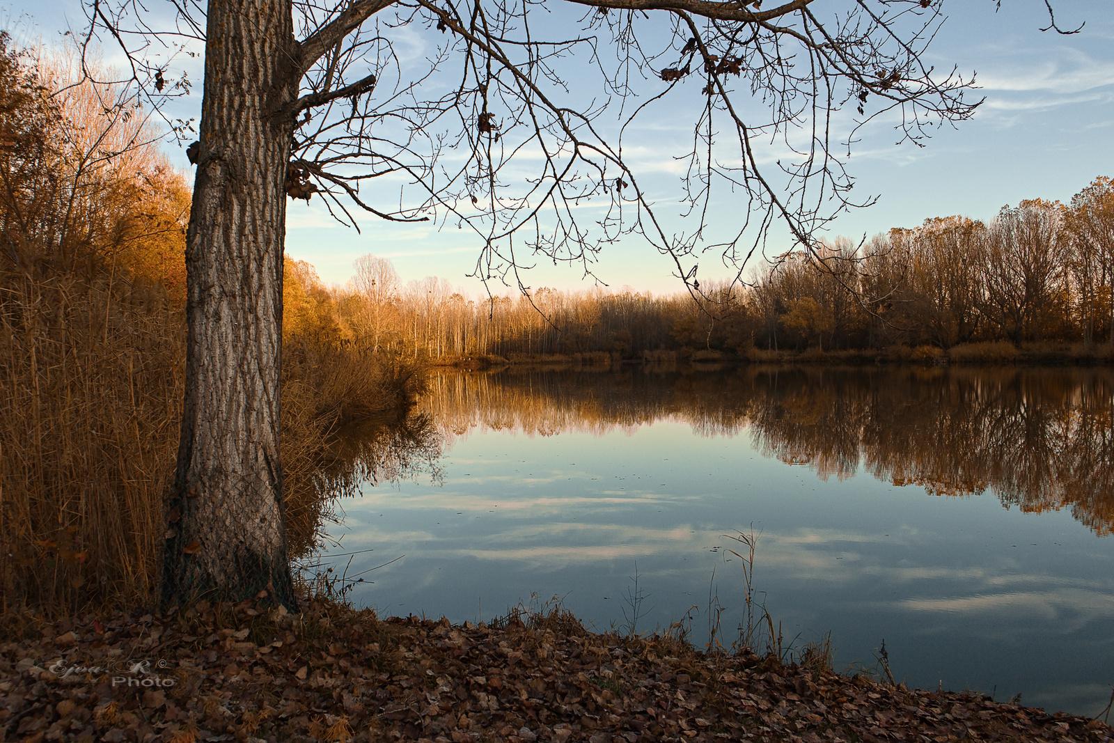 Őszi táj tó
