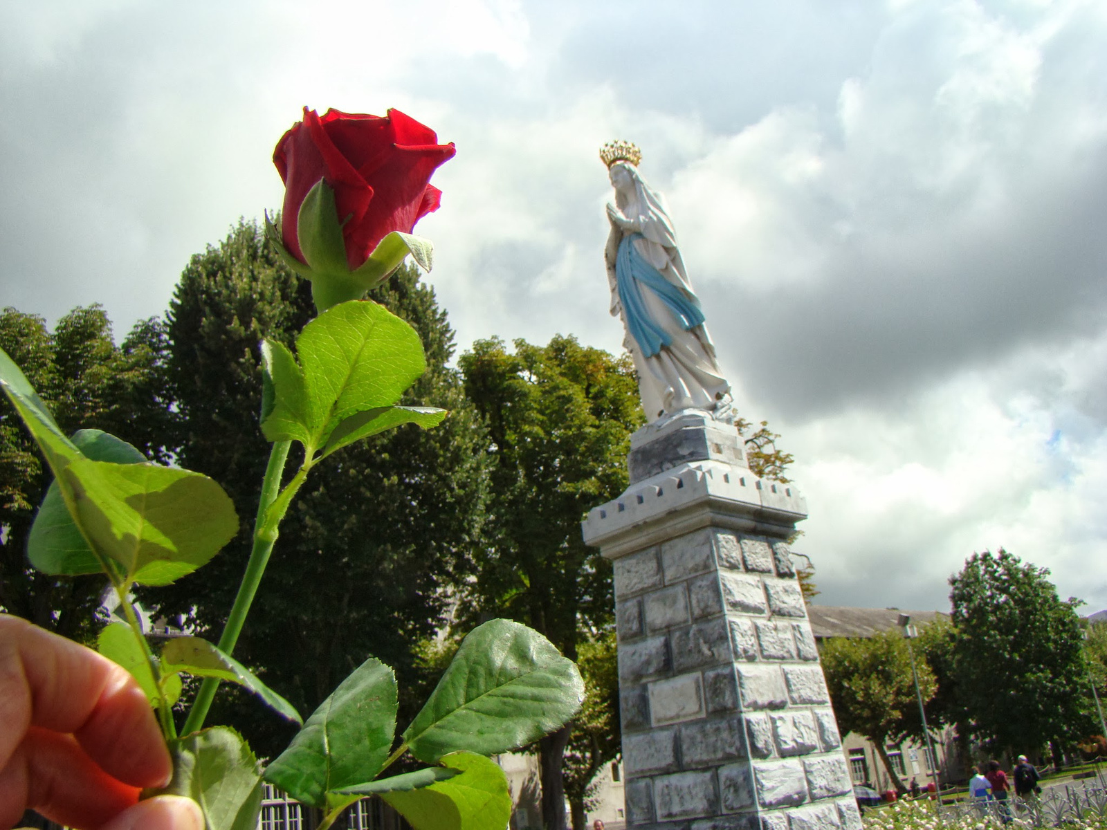 A red rose for Our Lady by ♥ Cathy Cotte ♥