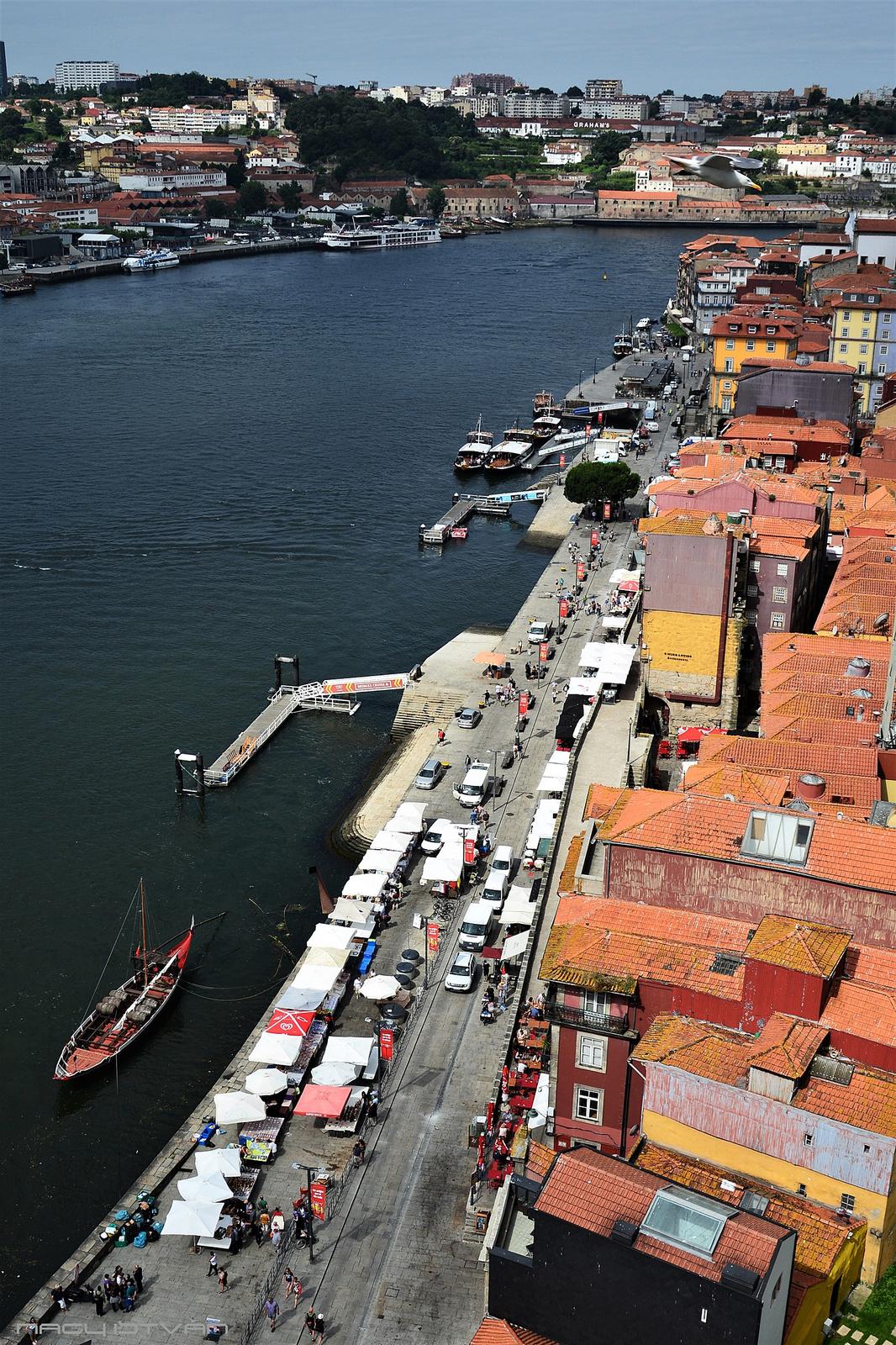 Porto 2018 0790 (2)