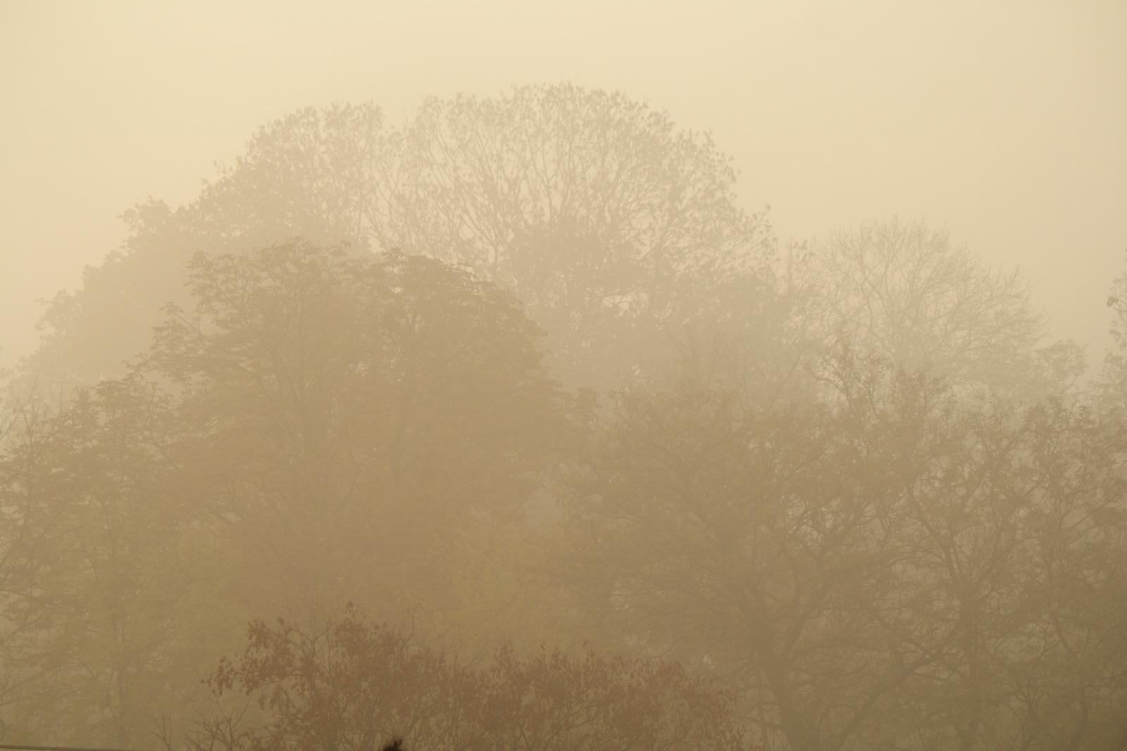 Köd másképp...