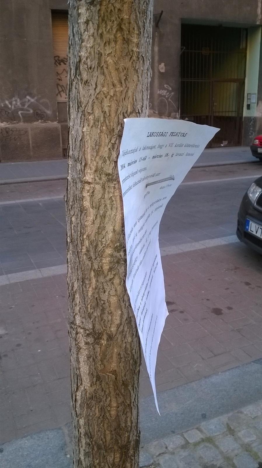 Növényvédelem a Dob utcában - fotó: Ádám