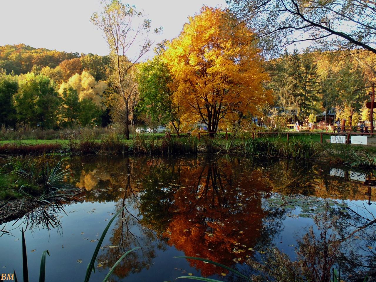 Igazi szép ősz