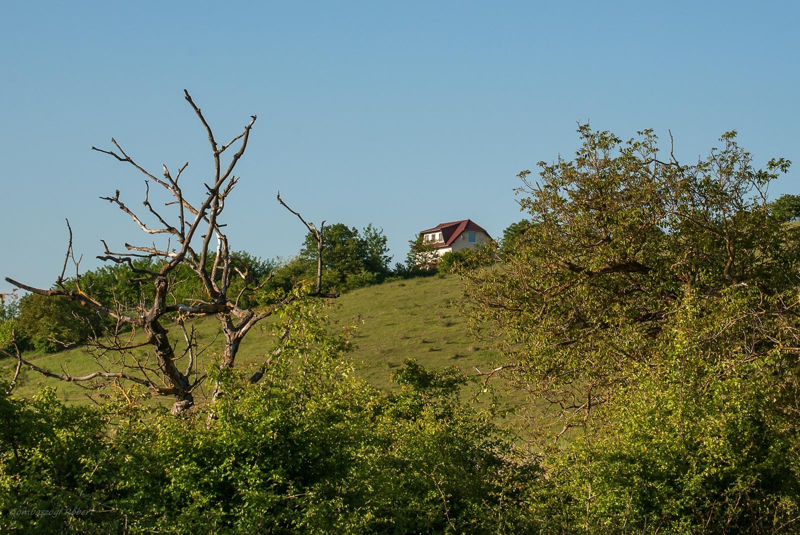 Ház a dombon