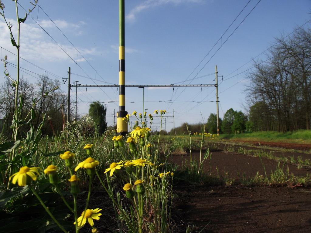 Arccal a vasút felé