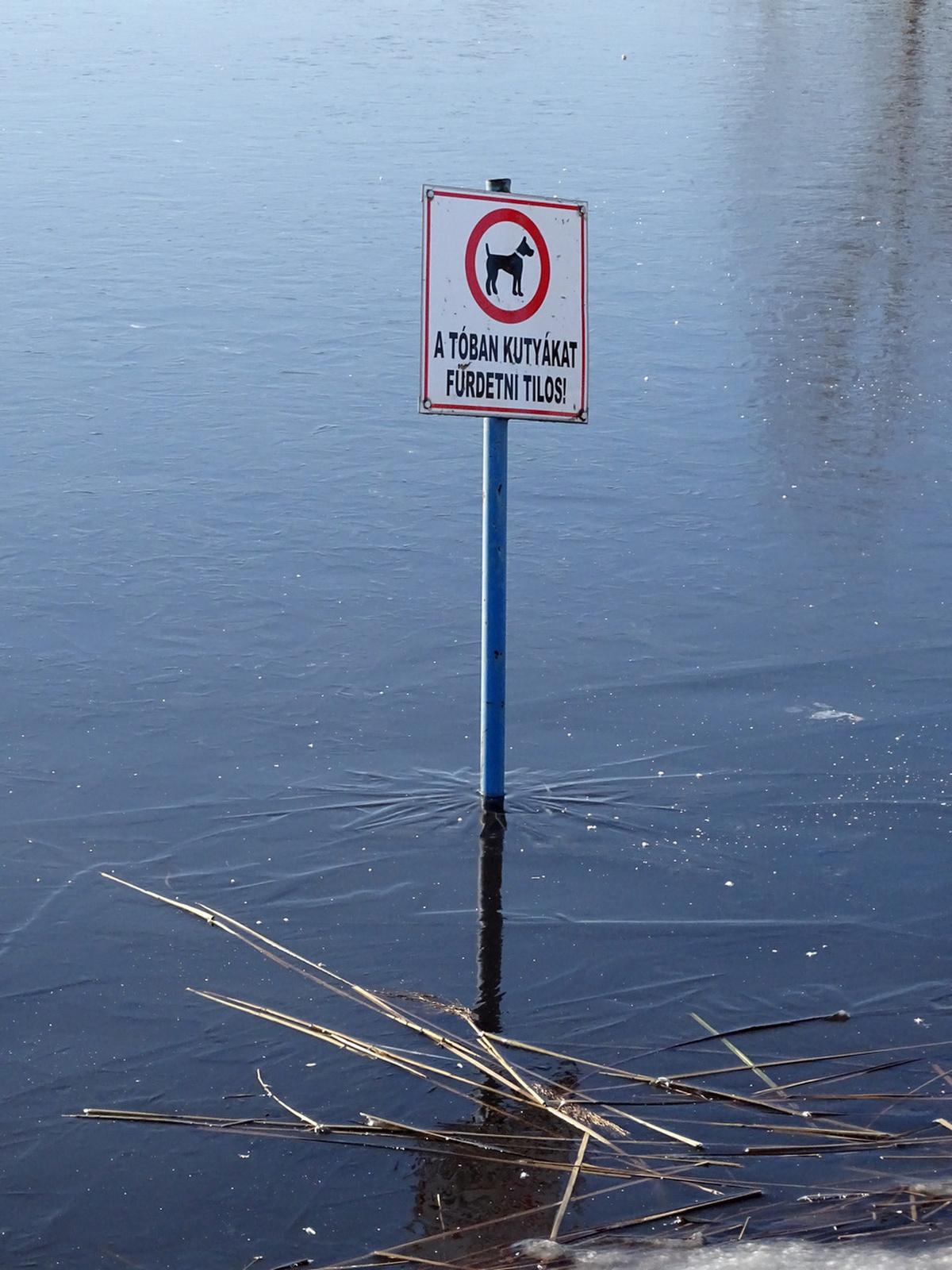 Jégfürdés tilos