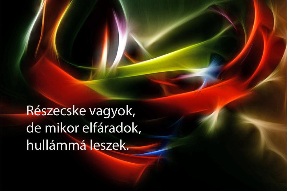haikuk 23