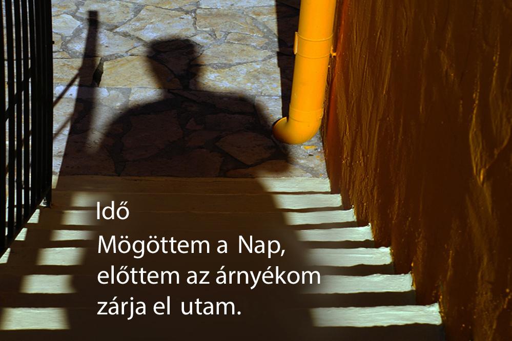 haikuk 64