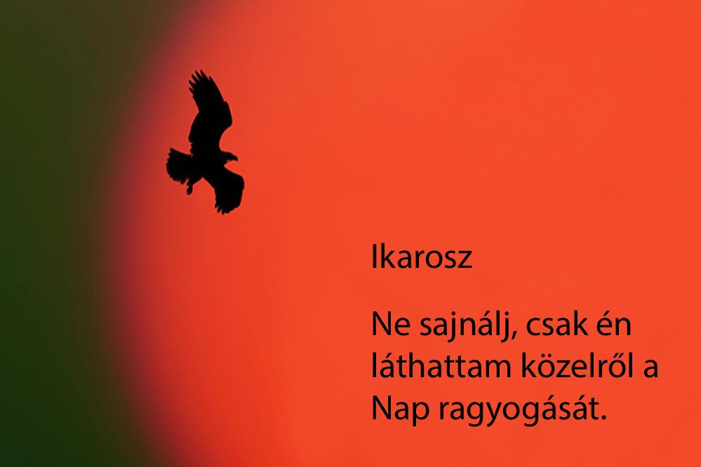 haikuk 70