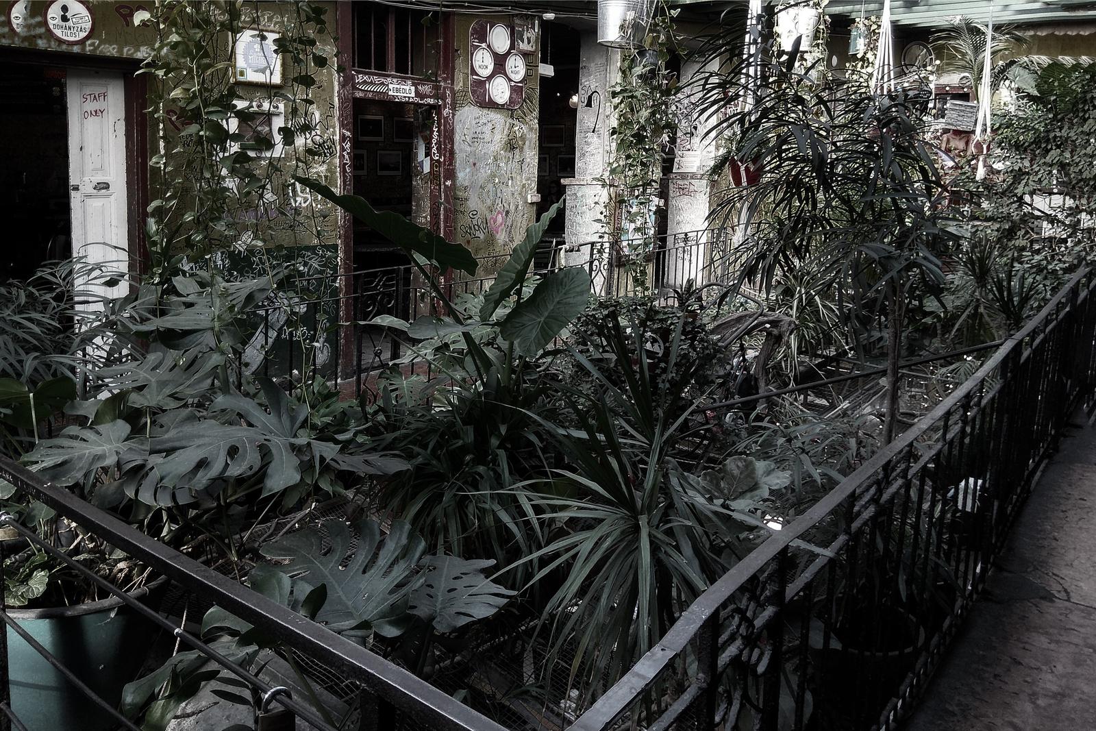Budapest szíve - Első emelet