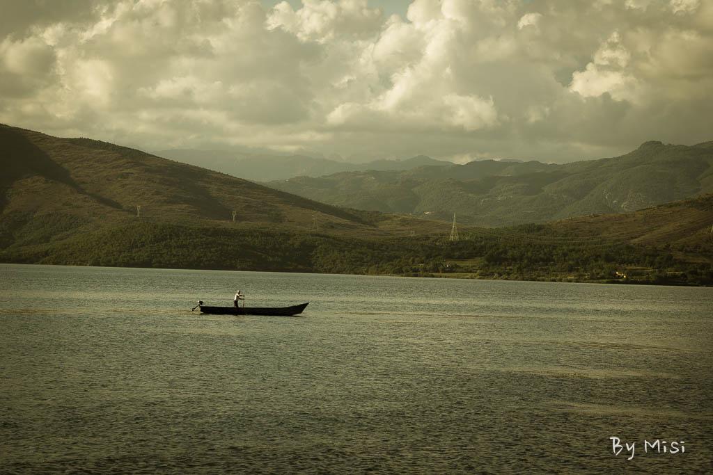 Halász
