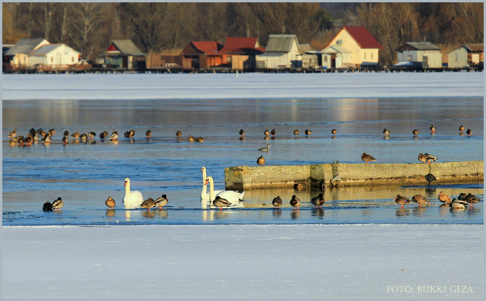 Jég-víz határán