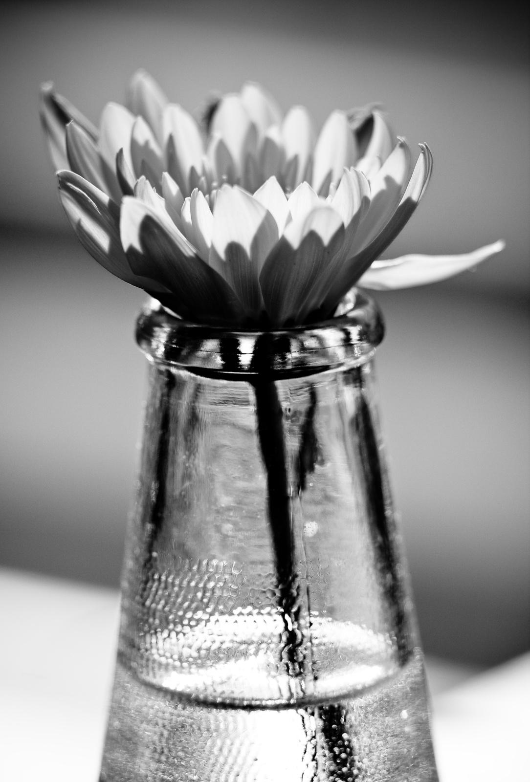 Virág üvegben 5
