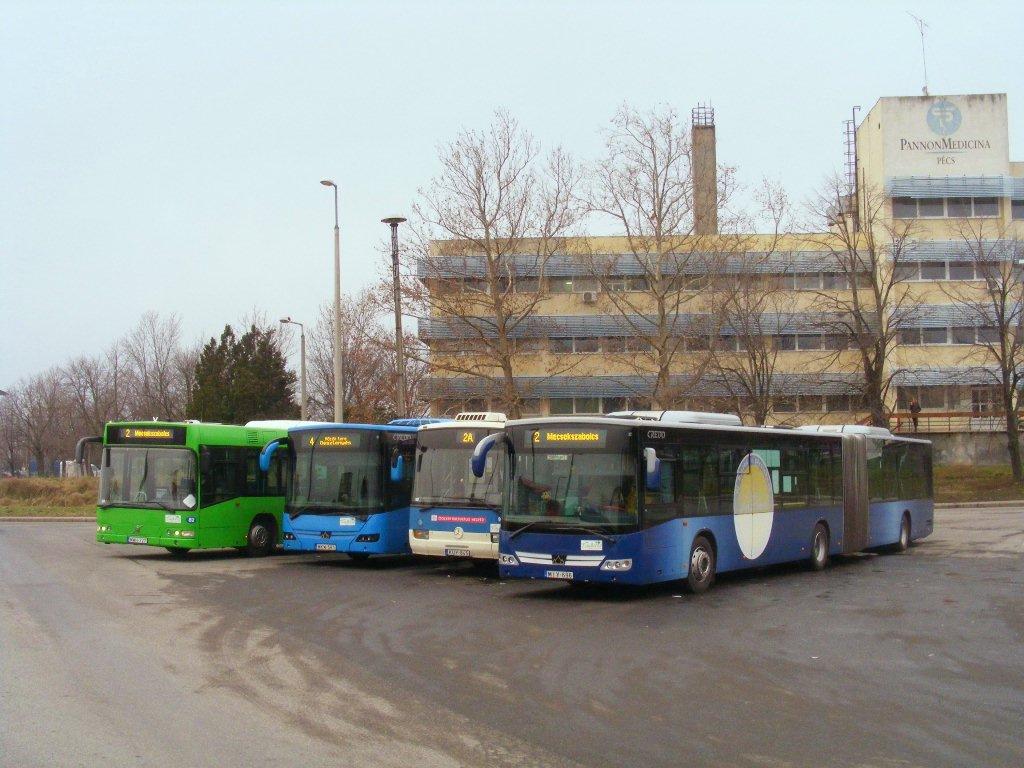 Buszkiállítás Uránvárosban