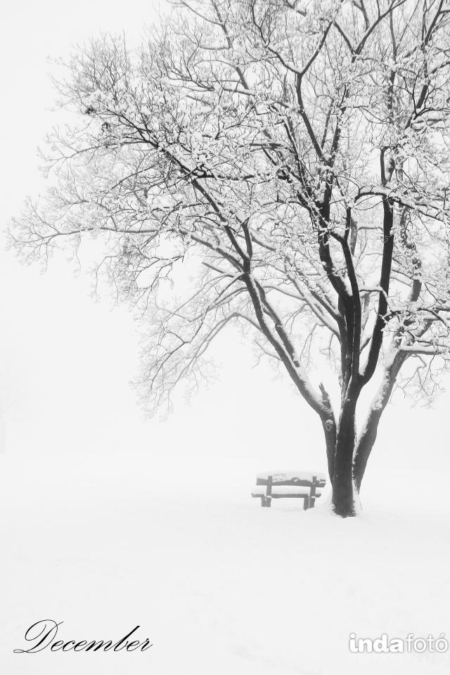 hunszabi december indafoto 640x960