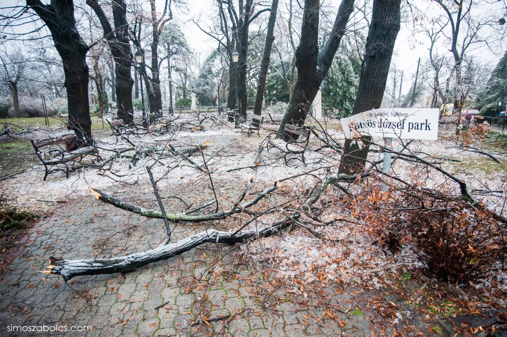 Eötvös József park