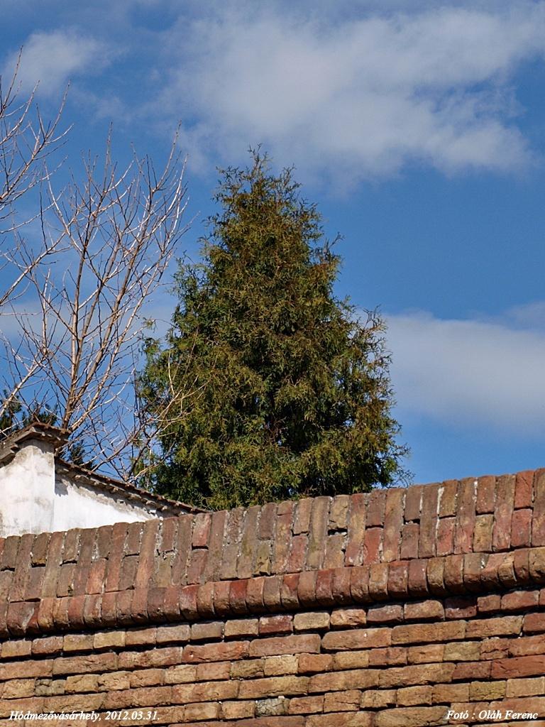 A fal tetején