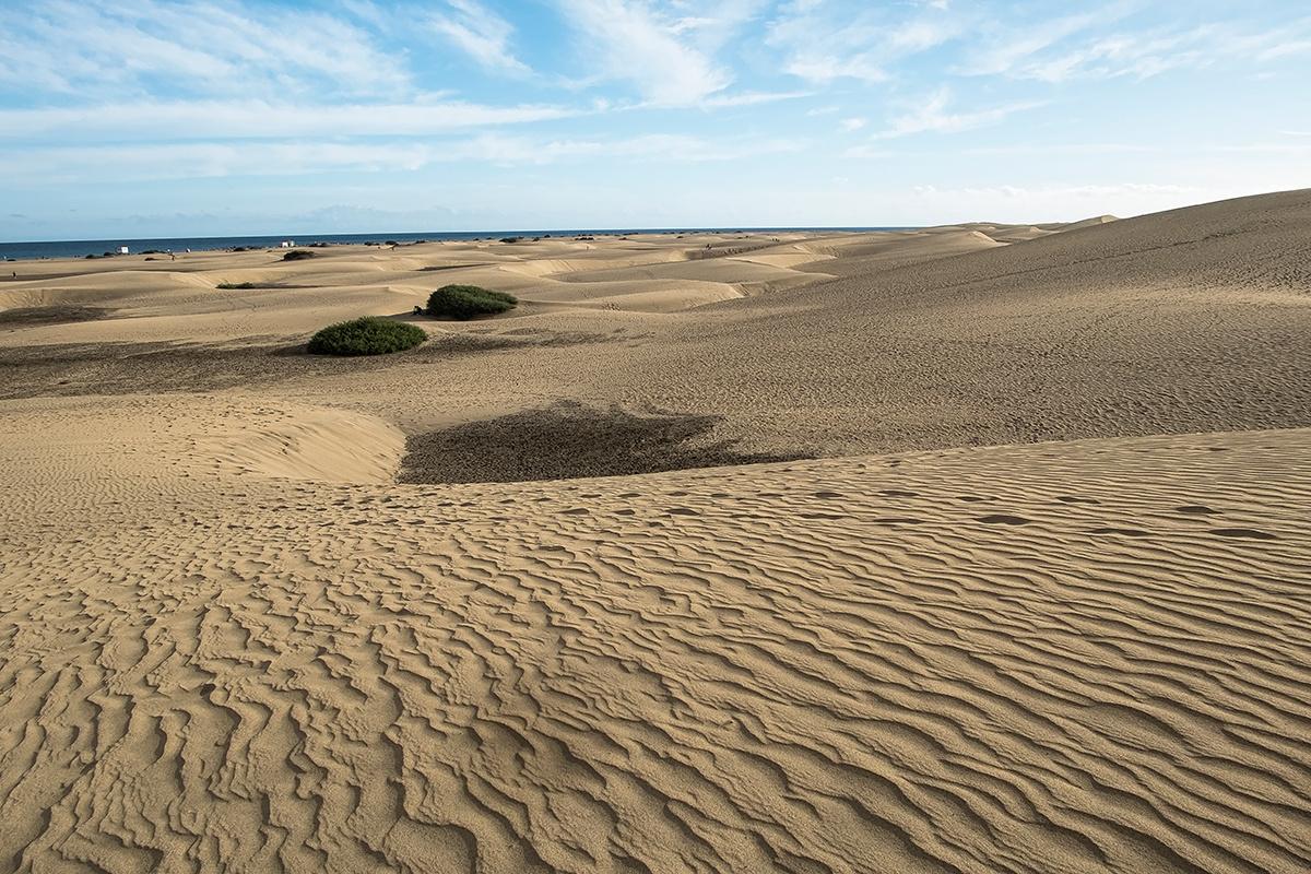 sivatagosodás a Kanári szigeteken