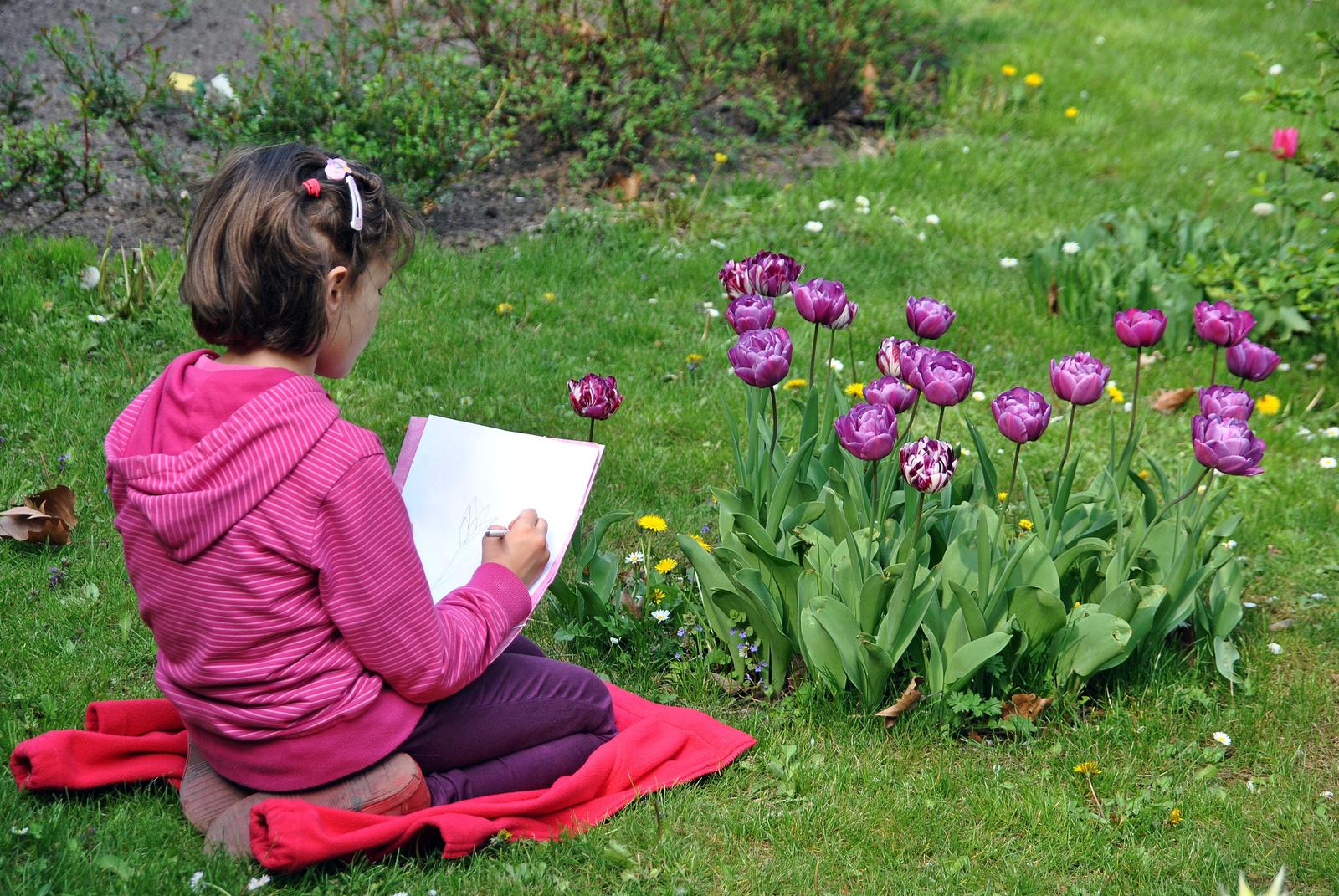Tulipán rajzlapon és pixeleken