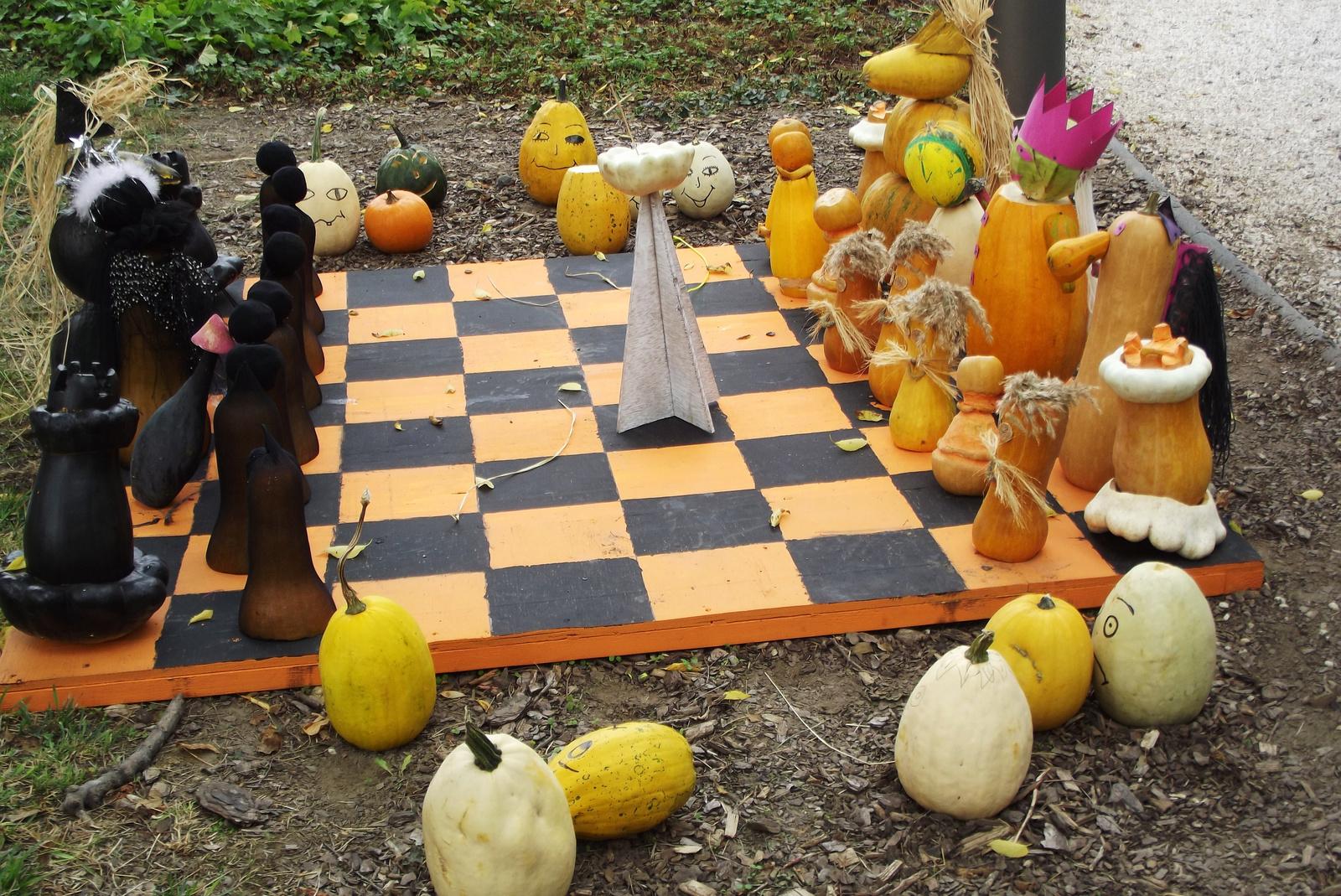 Tök! ... akarom mondani, sakk!