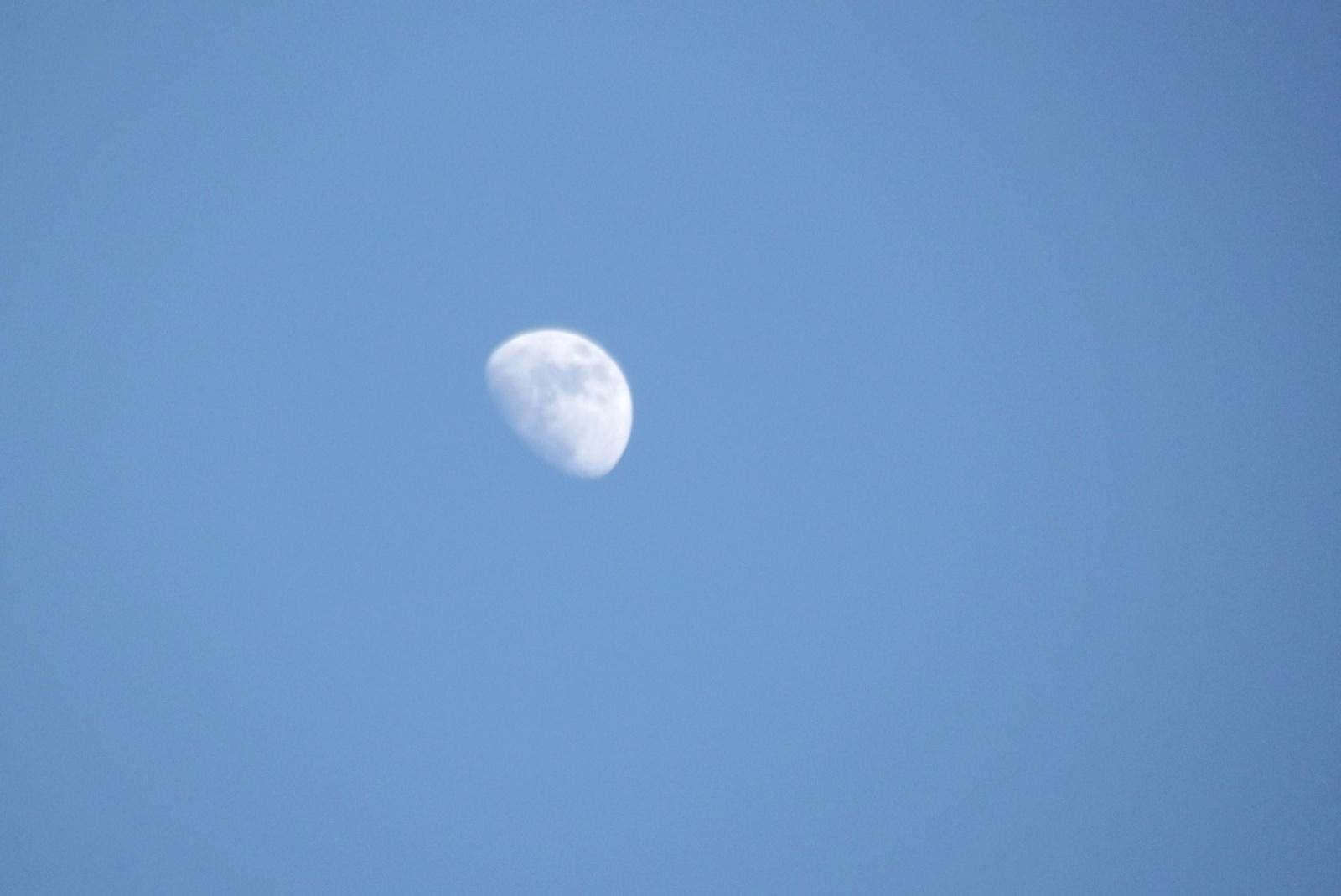 Hold - kék