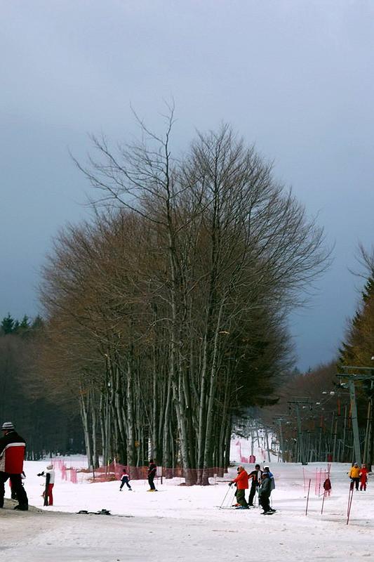Jó a hó ...
