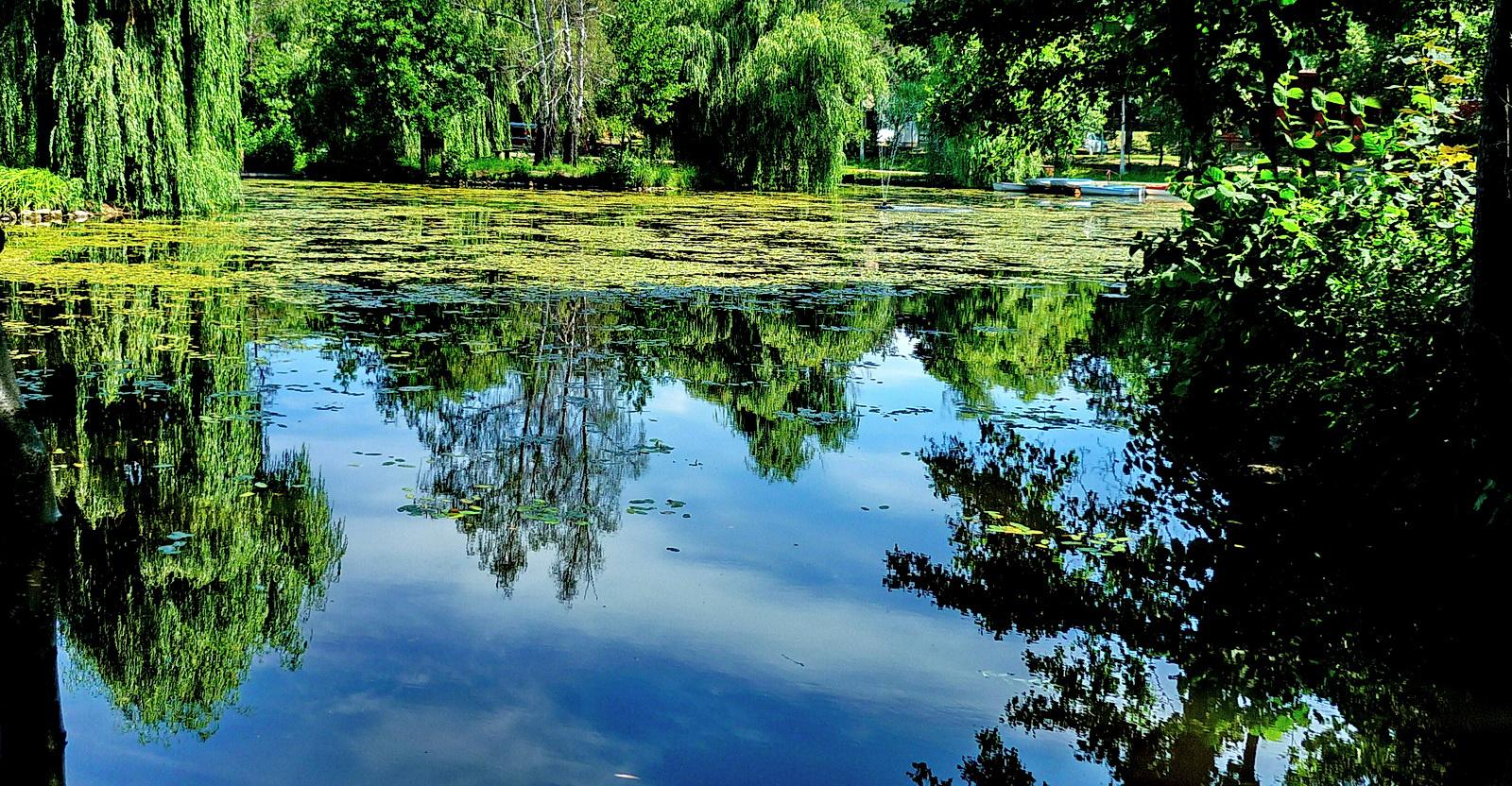 Tiszta tó ....